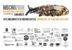Micro2018 Lanzarote